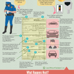 How to Read A Traffic Ticket Infographics